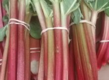 Fresh Rhubarb Make Crumble