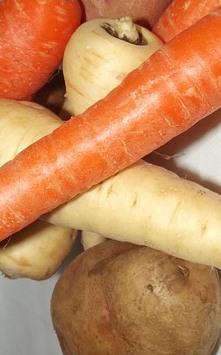 Carrot Swede Parsnip Potato Mash P20173